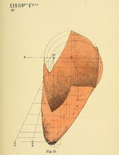 Benjamin Betts 19th-Century Mathematical Illustrations of Consciousness - Поиск в Google