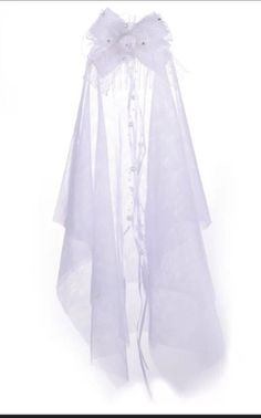 Bridal Veil With Comb. Lace Ribbon Wedding Bride To Be Hens Night