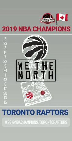 #wethenorth🏀 #nbachamps🏆 #wethechampions🇨🇦 Toronto Raptors, Nba Champions