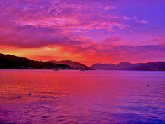 Purple Evening by James Bullis-King