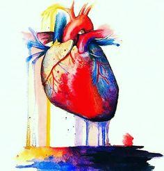 ♡ #hearts #heart #blood #organ #anatomy #medstudent #doctor #medicine #study #university #hospitallife #cardio #photography #ecg #life #l4l #likeforlike #kidney #surgery #hope #blessed http://quotags.net/ipost/1648464283569505016/?code=BbghYgvFEL4