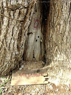 fairy door....magic
