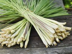 Lemongrass essential oil is one of the most powerful antibacterial oils. Find out about lemongrass essential oil benefits, properties and uses.