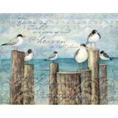 Coastal Breeze Boxed Notecard , 1005298 | Lang