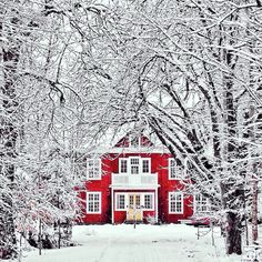 Winter magic - beautiful red house stands out in the snow. Such a winter wonderland! Winter Szenen, Winter Time, Winter Christmas, Merry Christmas, Winter Magic, Magical Christmas, Winter House, Christmas Time, Christmas Feeling
