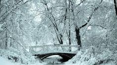 Image result for tumblr backgrounds winter