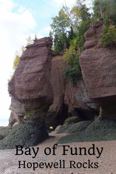 Bay of Fundy - Hopewell Rocks in New Brunswick, Canada - How to spend a day learning about the highest tides in the world | Gone with the Family
