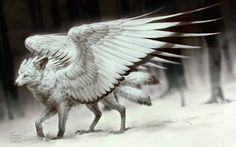 Spread My Wings by tincek-marincek wolf angel monster beast creature animal | Create your own roleplaying game material w/ RPG Bard: www.rpgbard.com | Writing inspiration for Dungeons and Dragons DND D&D Pathfinder PFRPG Warhammer 40k Star Wars Shadowrun Call of Cthulhu Lord of the Rings LoTR + d20 fantasy science fiction scifi horror design | Not Trusty Sword art: click artwork for source