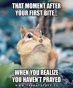 Pictures Archives~ THAT MOMENT AFTER YOUR FIRST BITE …