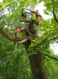 23 Magical Tree Houses We Want To Play In