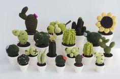 Cactus e uno splendido girasole gigante: sono gli amigurumi, le deliziose creazioni all'uncinetto che si possono trovare nello shop Etsy di Mary D.