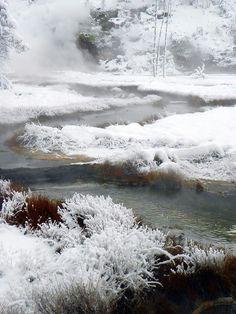 Yellowstone Park Fall