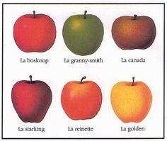 * Les pommes * Projet