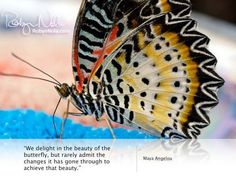"""We delight in the beauty of the butterfly, but rarely admit the changes it has gone through to achieve that beauty.""  ♥ Maya Angelou"
