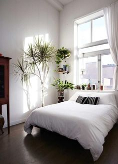 Wunderschönes Zimmer mit klassischer Einrichtung zum Wohlfühlen #bett #wgzimmer #homedesign