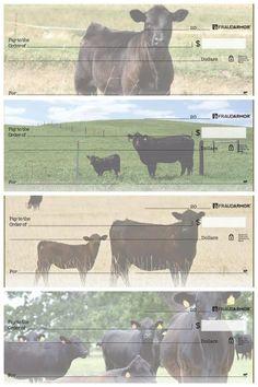 Black Angus Cows Checks