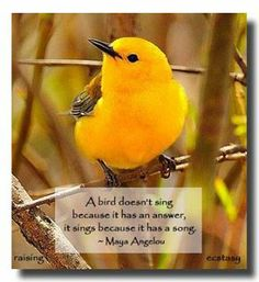 I love Maya Angelou's poetic language and message.