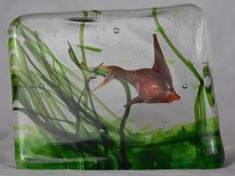 Design Classic from Gino Cenedese Murano! Generally 3 sizes. This piece is a Medium aquarium. Cenedese block glass aquarium with single red coloured angel fish, 1 fin.  Dimensions Height: 10cm x Length:13.7cm x Depth: 5cm
