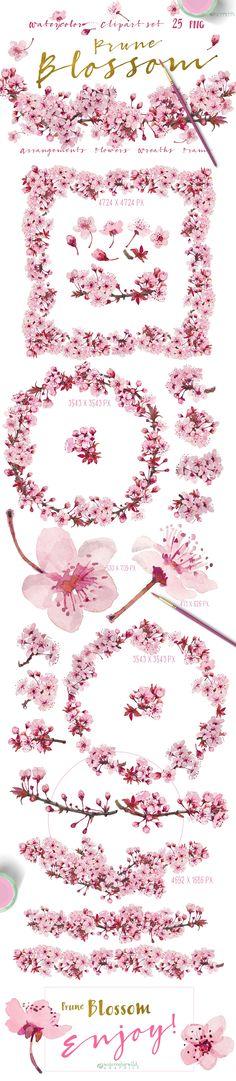 Prune Blossom - Wedding Clipart set  - Illustrations - 1