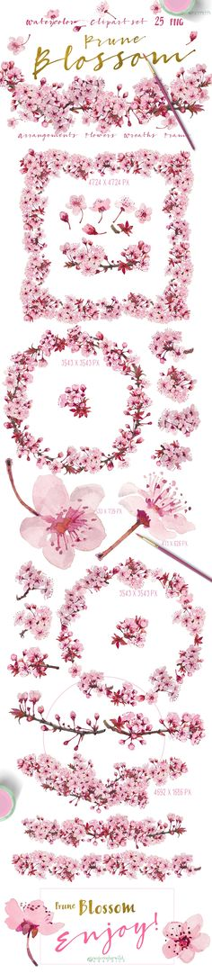 Prune Blossom - Wedding Clipart set  - Illustrations - 1