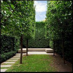 Garden Design Ideas : minimalist garden in Australia by Rob Mills… Formal Gardens, Small Gardens, Outdoor Gardens, Minimalist Landscape, Minimalist Garden, Minimalist Style, Formal Garden Design, Garden Landscape Design, Modern Landscaping