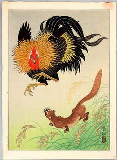 "Shoson Ohara (1877-1945)- Koson - - ""Rooster and Weasel"" -"