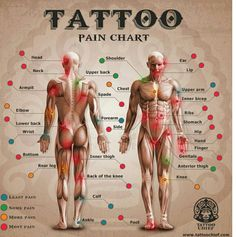 Download Free tattoo pain chart rib tattoos a tattoo tatoos tattoo pain chart charts ... to use and take to your artist.