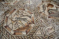 "Israel has, for the first time, presented to the public an ""impressive"" mosaic accidentally discovered in what was a wealthy neighbourhood in Roman and Byzantine times. The colourful mosaic discovered in Lod in central Israel is believed to have been the courtyard pavement of a ""magnificent villa'"