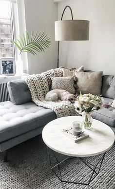 gray and white couch