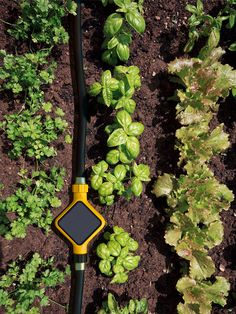 Edyn solar powered garden system by fuseproject monitors and tracks plants