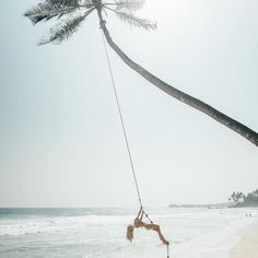 Spread your wings find a place to call yours then never let it go.  @travel_inhershoes  #travelinspo #summer #dreamer #picoftheday #swing #srilanka #unawatuna #islandgirl #tropical #palmtrees #beachlife #holiday #holidayinspo