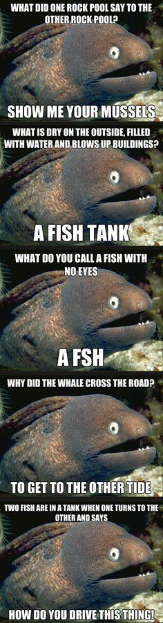 Bad Eel Jokes xD!!    I love bad jokes...but no one else seems to.