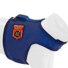 Peitoral Colete e Guia Azul AMF Pet - MeuAmigoPet.com.br #petshop #cachorro #cão #meuamigopet