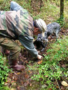 Truffle hunting at Caimeli