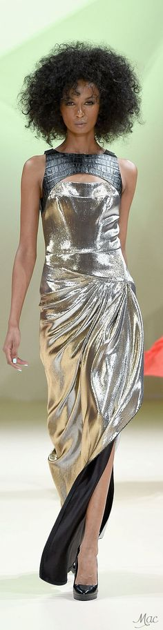 Spring 2015 Ready-to-Wear House of Ronald