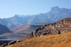 Enjoy a guided day tour to the Drakensberg Mountain Range from Durban. See Bushman Paintings, the beauty of the mountains, the World Heritage Site of Giant's Castle as well as the Nelson Mandela Capture Site. Experience an area of South Africa like y Durban South Africa, Cape Town South Africa, South Africa Wildlife, Beautiful Sites, World Heritage Sites, Travel Tours, Places Of Interest, Day Hike, Africa Travel