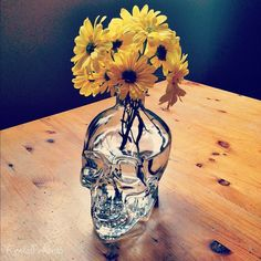 Omg I've wanted a skull vase for such a long time to put sunflowers in!!! This is perfect!