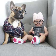 """""""Whoop, whoop!""""...""""We're the French Bulldog Nerd Posse""""."""