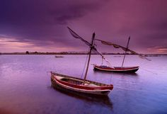Pantone Colors: Rhapsody - Boats in La Albufera, Valencia, Spain by Tramont_ana