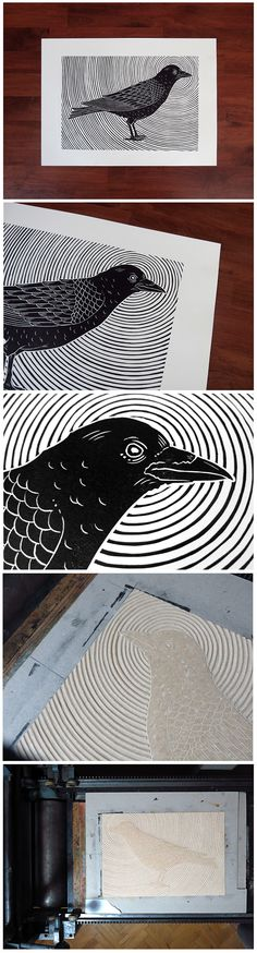 Crow on Behance