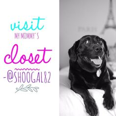 🎉Hi! I'm Riley!🐶 Follow my Mommy @shoogal82👭👭 🎉HOST PICK🎉 Thank you @gypsyangel on 10/27 Girl's Night Out🎉 🐶Please visit my Mom's closet today! We love fabulous things like Poshmarkers do! From Louis Vuitton to Kate Spade! But sometimes Daddy says too much Posh packages comes to our house!😉🗼😊Happy Poshmarking!👜 Visit my mommy @shoogal82 today📆🐶 ➡️PS: No Trades❌No Paypal❌ No What's your lowest❌ Tory Burch Shoes