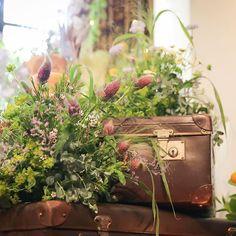 高砂の横のお花♫ブーケと同じツインキャンドル♫ピョンピョンとした感じで高原っぽい雰囲気で飾ってもらいました♫レースフラワーにブルーファンタジア。私の好きなお花いっぱい(*´꒳`*)#会場装飾#会場装花