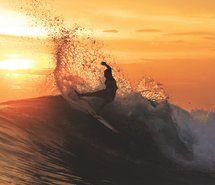 Inspiring picture venice beach, australia, beach, bikini. Resolution: 1280x854 px. Find the picture to your taste!