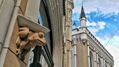"""Mi piace"": 67, commenti: 1 - Olya (@olgafinochenko) su Instagram: ""лягушечка #riga #latvia #baltics #travel #globetrotter #wanderlust #16x9 #16x9photography #detail"""