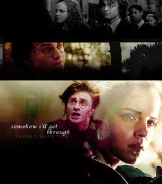 Harry and Hermione Potter. Harry Potter Hermione Granger, Harry James Potter, Harry Potter Facts, Harry Potter Quotes, Harry Potter Fandom, Harry Potter World, Harry Potter Movie Trivia, Harry Potter Characters, Harmony Harry Potter