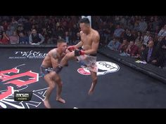 nice Andre Soukhamthath Wins the CES Title By Way of Beautiful Flying Knee|CES 33 Highlights