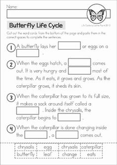 Life Cycle Butterfly Life Cycle cut and paste unit. A page from the unit: cut and paste the missing wordsButterfly Life Cycle cut and paste unit. A page from the unit: cut and paste the missing words Primary Science, Kindergarten Science, Elementary Science, Science Classroom, Teaching Science, Preschool, Science Worksheets, Science Lessons, Science Activities