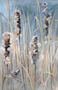 Penduline tit with bulrush Bird Paintings, Bird Drawings, Painting & Drawing, Birds, Ink, Spring, Artist, Flowers, Paintings Of Birds