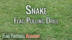 21 best flag football plays images on pinterest flag football this flag football drill is one i run almost every practice to work on our flag pulling i like this drill for all ages there are variations of the drill fandeluxe Gallery