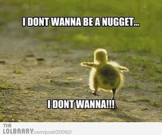 I don't want to be a nugget!